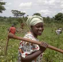 bekämpfung der armut